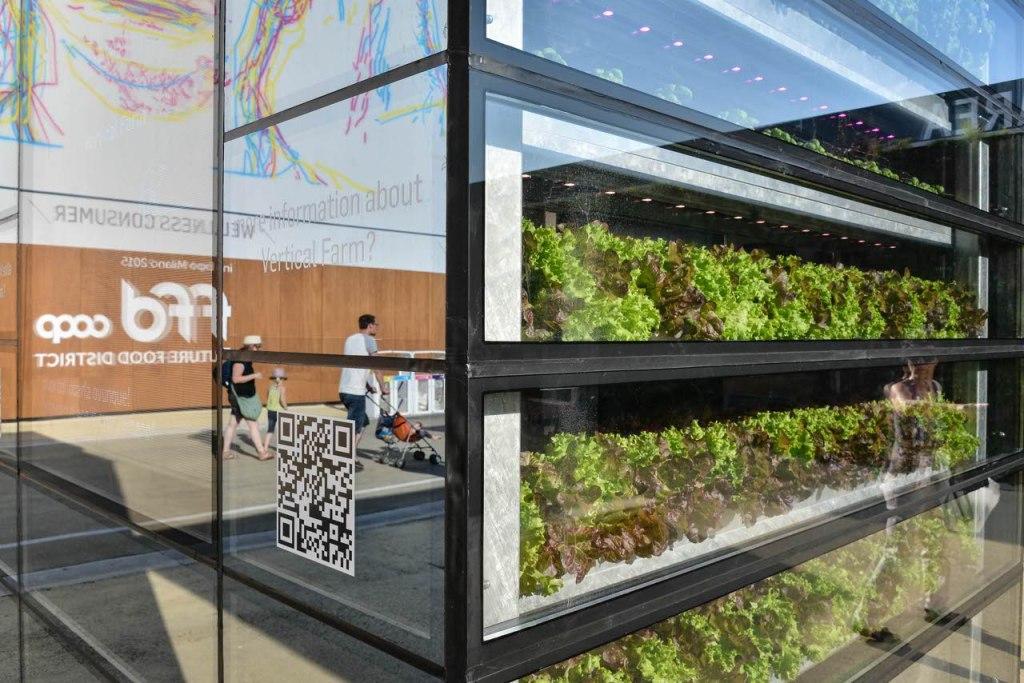Primo prototipo di coltivazione verticale in ambiente controllato portato da ENEA ad EXPO 2015
